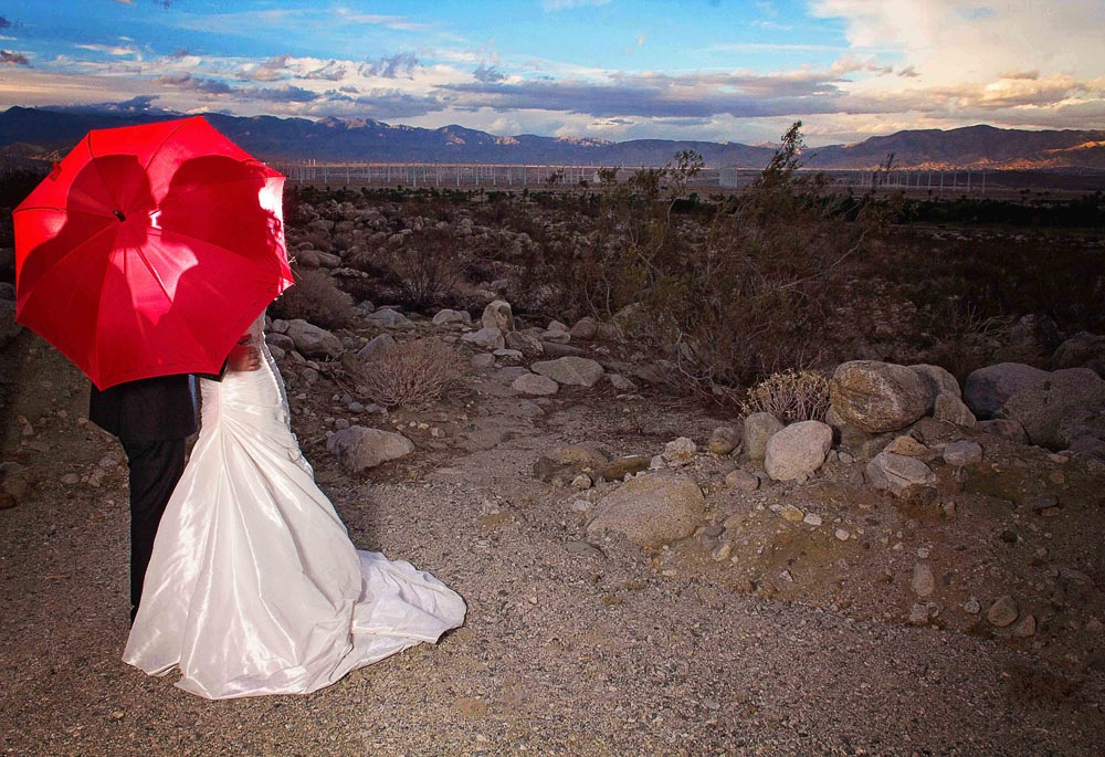 Creative Palm Springs Wedding Ideas Windmills-24